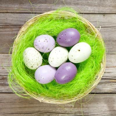 Ostern im Berchtesgadener Land - Nest